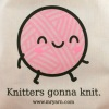 Mr. Yarn Knitters Gonna Knit Project Bag